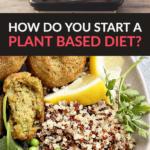 Plant Based Diet Beginners