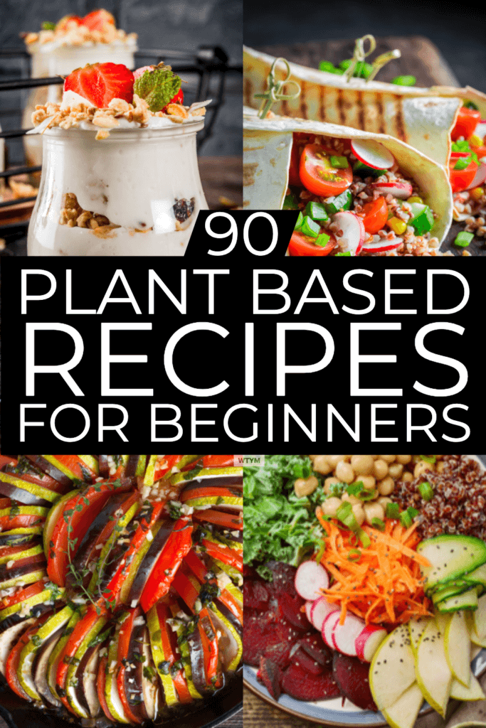Plant Based Diet Meal Plan For Beginners: 90 Plant Based ...
